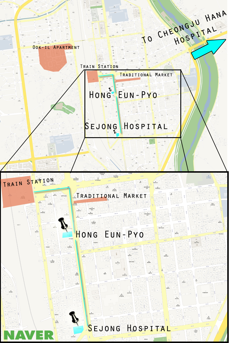 This is a map of Jochiwon with Sejong Hospital and Hong Eun-pyo highlighted. (Adam Ellerson/ The Sejong Dish)