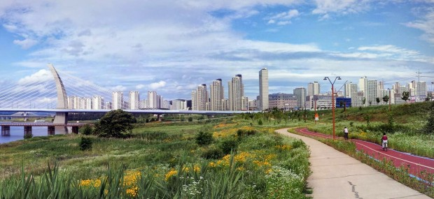 Sejong City, South Korea is seen from the bike trail on Thursday, June 5, 2014. Sejong City plans to have 350 kilometers of bicycle paths throughout the city. (Salgu Wissmath/ The Sejong Dish)